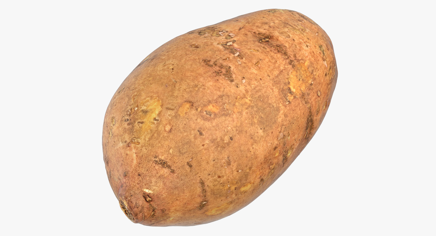 sweet potato 05 3D model
