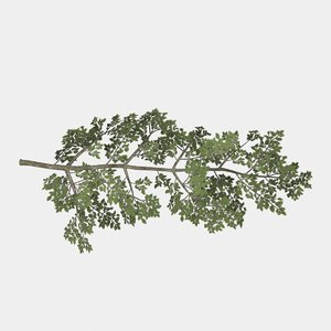 3D rigged tree branch types