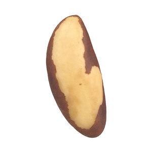 3D scanned brazil nut