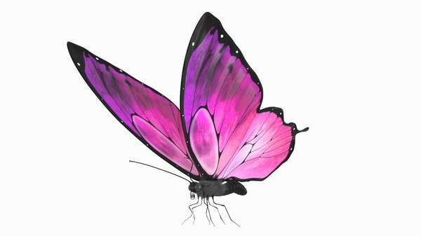 3D butterfly rigged