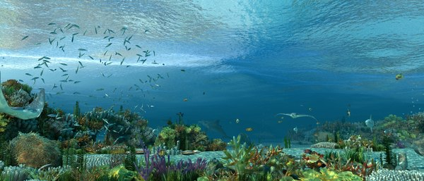 3D model underwater worldundersea scenejellyfishfish