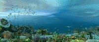 Undersea World 3D model