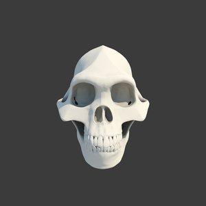 skull lucy australopithecus 3D model