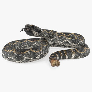 giant dark rattlesnake snake 3D model