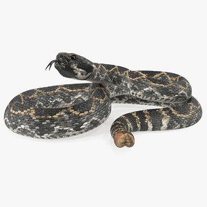 dark rattlesnake snake rattle 3D model