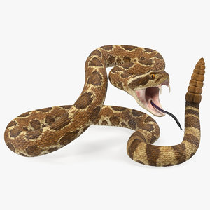 light rattlesnake attack pose 3D