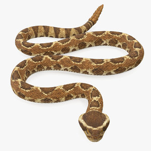 light rattlesnake crawling pose 3D model
