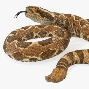 3D light rattlesnake snake rattle