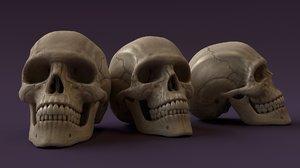 realistic human skull 3D model