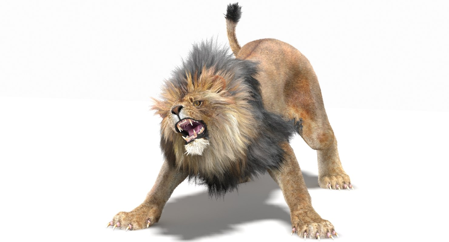 Lion3dModelFurMentalRay01.jpg9B0DE177-5D3A-4979-BD7B-8872FE867591Default.jpg