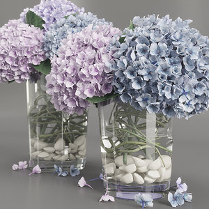 3D model hydrangea purple blue