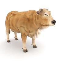 bodacious bull buck model