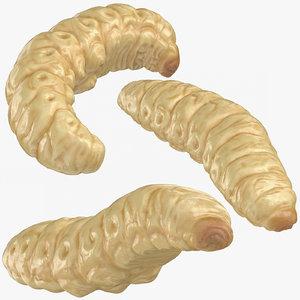 maggots poses 3D