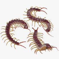 3D centipedes poses