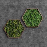 Decorative Pentagonal Green Moss