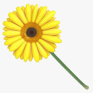 gerbera yellow - 3D