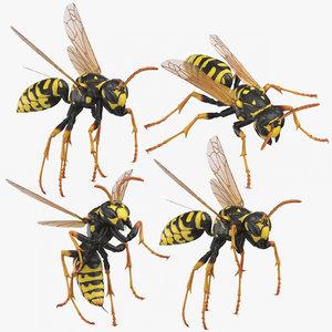 3D paper wasp model
