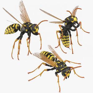 3D model paper wasp poses