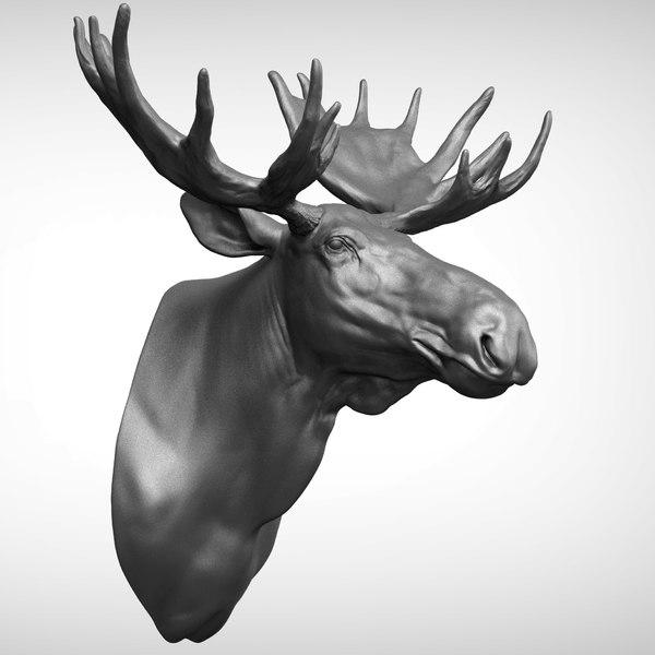 3D moose zbrush head model