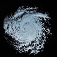 storm 1 3D model