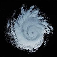 storm 3D model