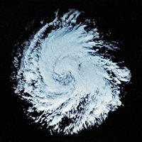 storm 6 3D model