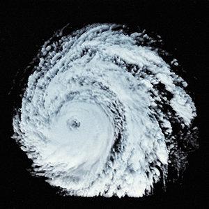 storm 7 3D model