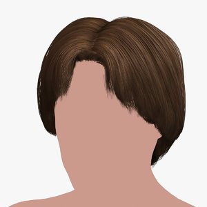 hairstyle 24 hair 3D model