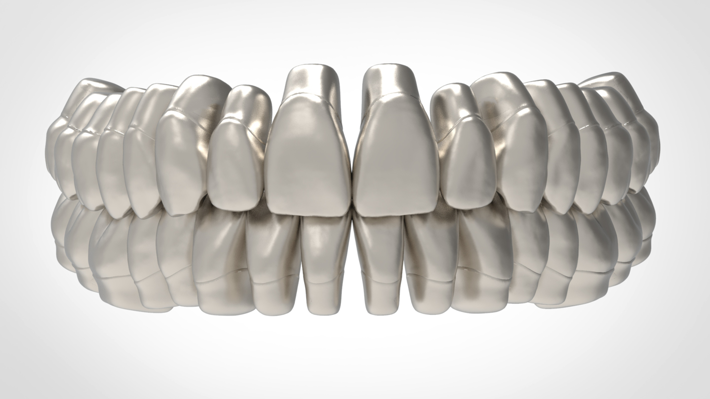 3D model dental anatomy library thimble