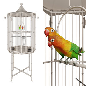 3D cage lovebirds model