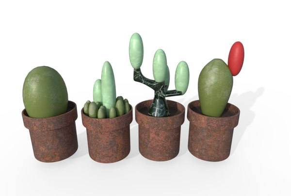 cactus planters model