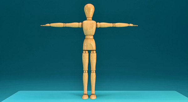 wooden character anatomy 3D model