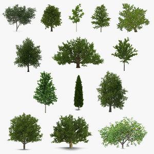 summer trees 3 3D model