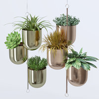 House plant indoor plant hanging metal pots