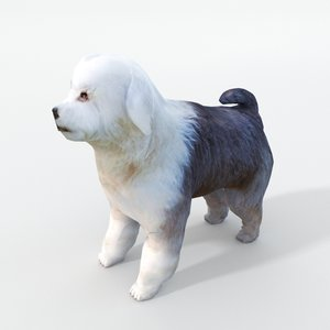 3D model old english sheepdog