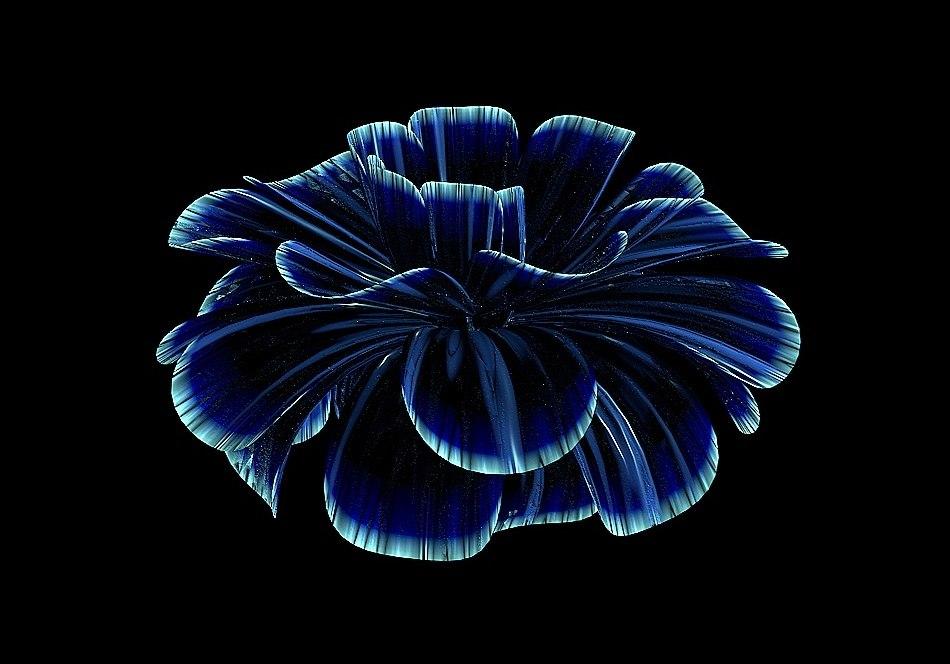 3D flower lunar