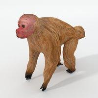 uakaris 3D model