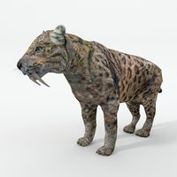3D saber-toothed tiger model