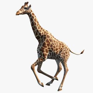 3D giraffe rigged model