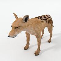 3D model tasmanian tiger
