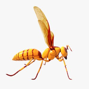 3D executioner wasp model