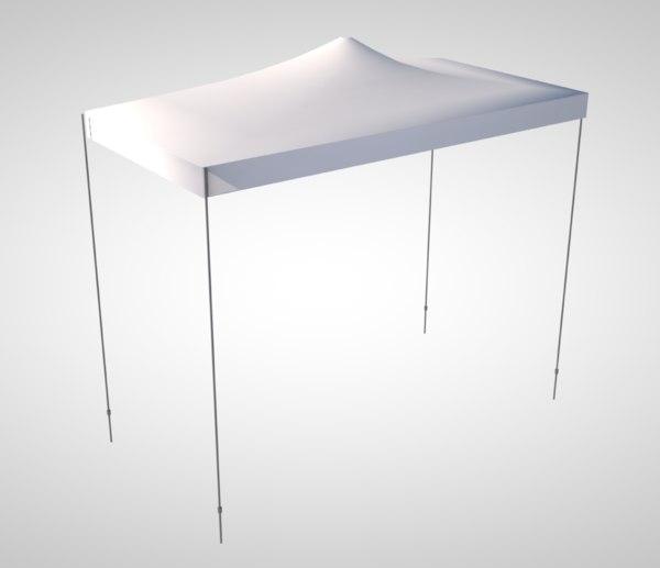 3D 10x10 tent