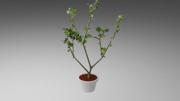 small tree pot 3D model