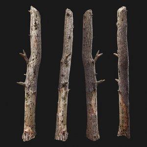 3D dead tree scan