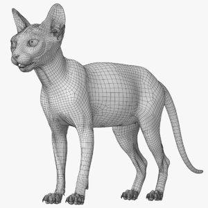 3D model sphynx