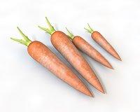3D model carrot vegetable food