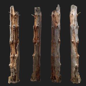 dead tree scan 3D