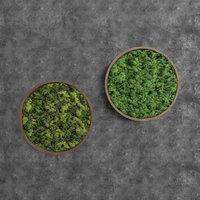 Decorative Round Green Moss