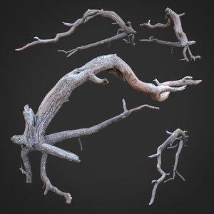 3D dead tree scan sna0003 model