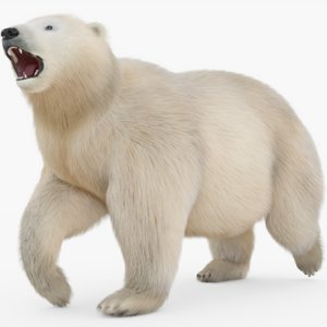 rigged polar fur 3D